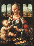Leonardo  Da Vinci The Madonna of the Carnation oil painting picture wholesale