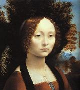 Leonardo  Da Vinci Portrait of Ginerva de'Benci oil painting picture wholesale