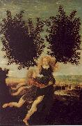 Antonio Pollaiuolo Apollo and Daphne oil painting picture wholesale