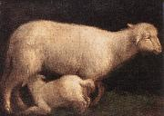 BASSANO, Jacopo Sheep and Lamb dghj oil painting picture wholesale