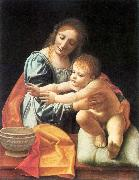 BOLTRAFFIO, Giovanni Antonio The Virgin and Child fgh oil