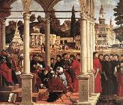 CARPACCIO, Vittore Disputation of St Stephen  fgh oil painting picture wholesale