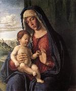 CIMA da Conegliano Madonna and Child dfhdt oil painting picture wholesale