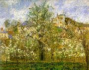 Camille Pissaro Kitchen Garden with Trees in Flower, Pontoise oil painting picture wholesale