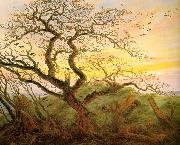 Caspar David Friedrich The Tree of Crows oil painting picture wholesale