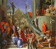 Jacopo Pontormo Joseph in Egypt oil painting picture wholesale