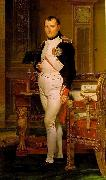 Jacques-Louis David Napoleon in His Study oil painting picture wholesale