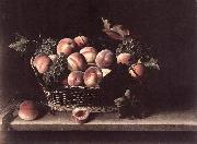 MOILLON, Louise Basket with Peaches and Grapes s oil painting artist