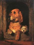 Sir Edwin Landseer Dignity and Impudence oil painting
