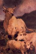 Sir Edwin Landseer Wild Cattle at Chillingham oil painting