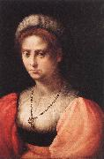 PULIGO, Domenico Portrait of a Lady agf oil painting picture wholesale