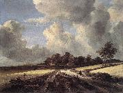 RUISDAEL, Jacob Isaackszon van Wheat Fields dh oil painting picture wholesale