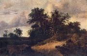 RUISDAEL, Jacob Isaackszon van Landscape with a House in the Grove at oil painting picture wholesale