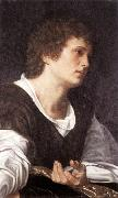 SAVOLDO, Giovanni Girolamo Bust of a Youth sg oil painting picture wholesale