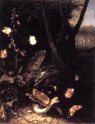 SCHRIECK, Otto Marseus van Still-life with Plants and Reptiles ery oil painting picture wholesale