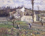 Camille Pissarro Cabbage patch near the village oil painting reproduction