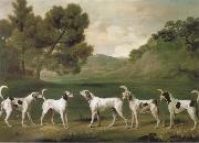 George Stubbs Some Dogs oil painting picture wholesale