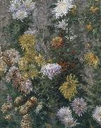Gustave Caillebotte White and yellow chrysanthemum oil painting picture wholesale