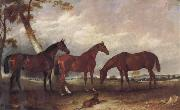 unknow artist Some Horses oil painting picture wholesale