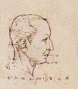 LEONARDO da Vinci Study of the proportion of the head oil painting picture wholesale