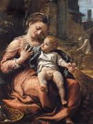 Correggio The Madonna of the Basket oil painting picture wholesale