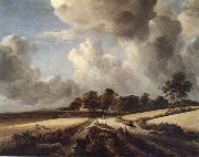 RUISDAEL, Jacob Isaackszon van Wheatfields oil painting picture wholesale