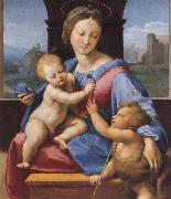 Raphael The Madonna and Child with teh Infant Baptist oil painting picture wholesale