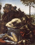 SODOMA, Il Saint Jerome in Penitence oil painting picture wholesale
