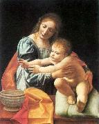 BOLTRAFFIO, Giovanni Antonio The Virgin and Child 1 oil painting picture wholesale