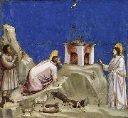GIOTTO di Bondone Joachim-s Sacrificial Offering oil painting picture wholesale
