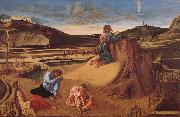 Giovanni Bellini Christ in Gethsemane oil painting picture wholesale