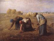 jean-francois millet Axplockerskorna oil painting picture wholesale