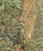 Albert Joseph Moore,ARWS Study of an Ash Trunk (mk46) oil painting artist