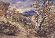 Anthony Vandyck Copley Fielding Scence in Glen Falloch,Argyllshire (mk47) oil painting picture wholesale