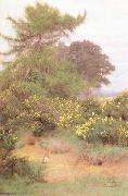 George Marks At the Edge of Shere Heath (mk46) oil painting picture wholesale