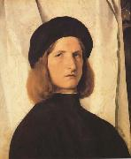 Lorenzo Lotto Young Man Before a White Curtain (mk45) oil painting picture wholesale