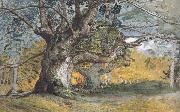 Samuel Palmer Oak Trees,Lullingstone Park oil painting picture wholesale