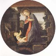 Sandro Botticelli Madonna in Adoration of the Christ Child oil painting picture wholesale
