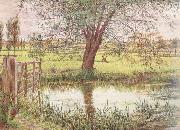 William Bell Scott Landscape with a Gate and Watermeadow (mk46) oil painting artist