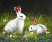 unknow artist Rabbit oil painting picture wholesale