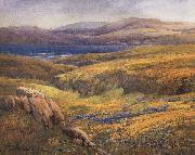 unknow artist Point Lobos in the Springtime oil painting picture wholesale