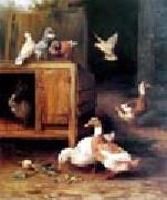 unknow artist Duck and Pigeon oil painting picture wholesale