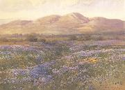 unknow artist Lupine in Kern County oil painting picture wholesale
