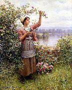 Daniel Ridgeway Knight Gathering Roses oil painting picture wholesale