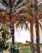 Joaquin Sorolla Palm oil painting on canvas