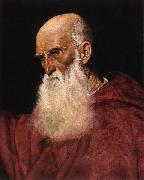 Follower of Jacopo da Ponte Portrait of a Cardinal oil painting