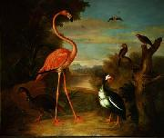 Jakob Bogdani Flamingo and Other Birds in a Landscape oil