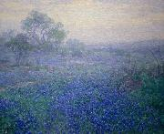 Julian Onderdonk Cloudy Day. Bluebonnets near San Antonio, Texas oil painting