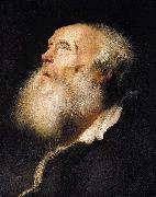Jan lievens Study of an Old Man oil painting artist