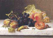 Johann Wilhelm Preyer Grapes peaches and plums on a marble ledge oil